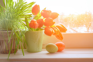 Spring background with grass and tulips on window board on a sunset after rain