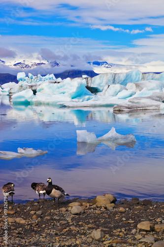 Jökulsárlón Glacial Lagoon Poster