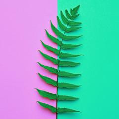 Creative Tropical Fresh Fern Leaf. Green Fashion Summer Design. Bright Purple Summer Color. Nature Beach leaf background. Minimal Art. Detail