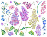 Set of watercolor spring nature floral elements - 193293706