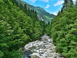 Austrian Alps-stream Zemmbach - 193308362