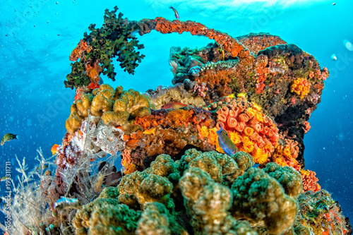 Foto op Aluminium Schipbreuk Ship Wreck in maldives indian ocean
