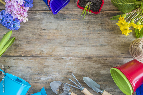 Sticker Spring gardening/frame of spring flowers and gardening tools on old wooden background with copy space