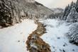 Quadro torrente Canali in inverno - Val Canali, nel parco naturale di Paneveggio - Trentino