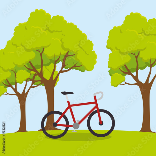 bicycle sport wellness lifestyle vector illustration design