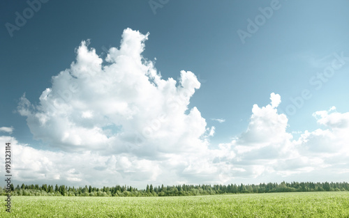 Aluminium Zomer field of grass and perfect sky