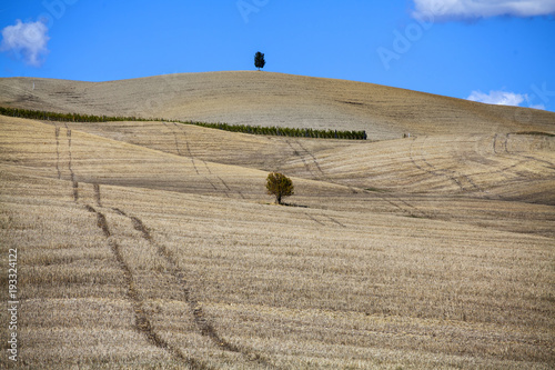 Tuinposter Toscane Tuscany - Landscape panorama, hills and meadow