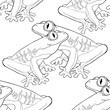 coloring seamless pattern woody frog is red-eyed. vector illustration