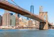 New York City & Brooklyn Bridge