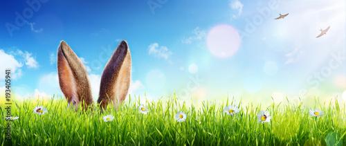 Uszy Z Królika Pojawiają Się W Trawie - Karta Wielkanocna