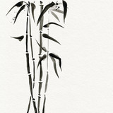 Bamboo trees in Japanese style. Watercolor hand painting illustration