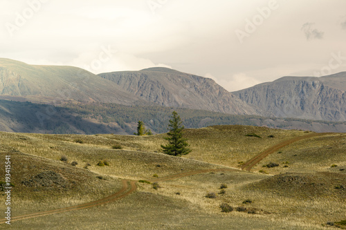 Aluminium Wit Beautiful view of the hills with a dirt road to the peaks. Colorful mountain valley with rocks.