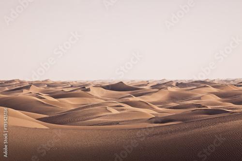 Dünenlandschaft 4 - 193425136