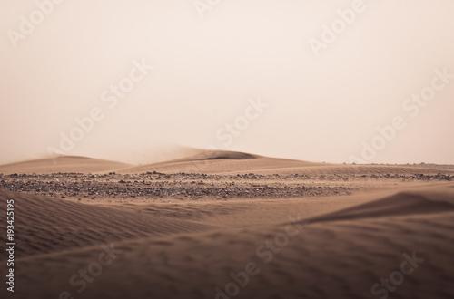 Aluminium Zalm Dünenlandschaft 5