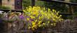 roleta: cotswold traditional village england uk