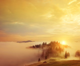 Early morning in the mountains.The top of the hill with the fir trees in the fog. Soft sunlight. A magical misty morning in the summer in the mountains.  - 193431312