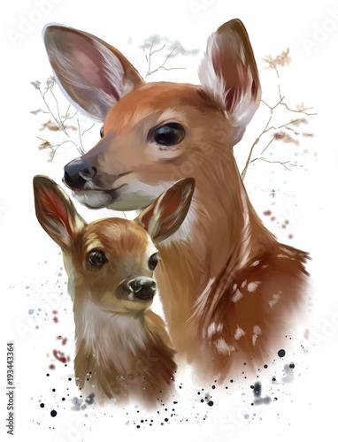 wild-life-sika-deer-watercolor-painting