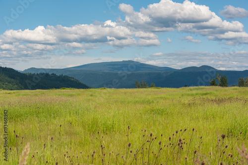 Fotobehang Blauw Grasslands of Washington