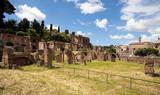 Forum romanum, Rome, Italy - 193478599