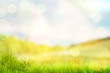 canvas print picture - Bright spring or summer background