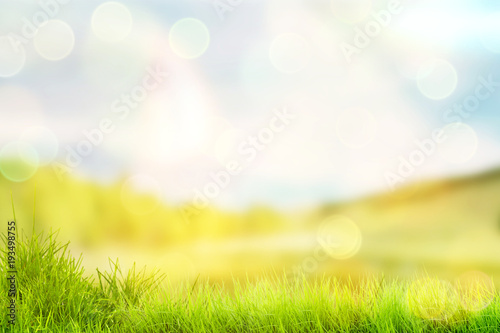 canvas print picture Bright spring or summer background