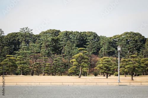 Imperial garden in Tokyo
