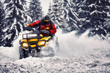 Winter walk on the quad bike in the forest. - 193558327