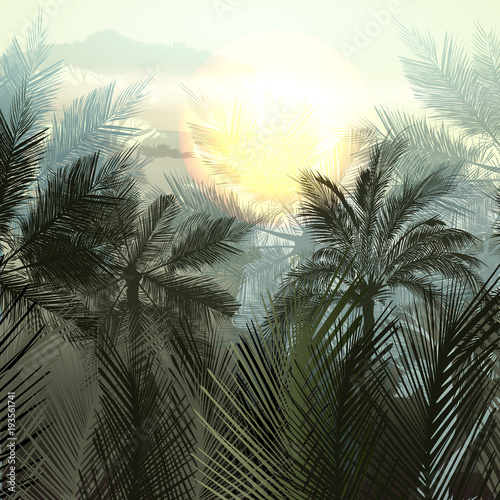Jungle palms and tropical plants. Vector gradient landscape - 193561741
