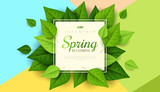 Spring   Green Leaves Wall Sticker