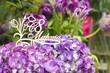 Фиолетовые гортензии с деревянной надписью С 8 марта