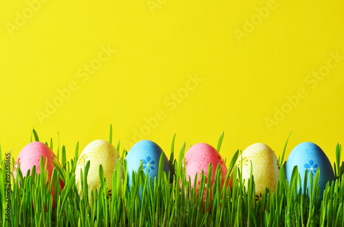 Painted Easter eggs in a green grass on a meadow.