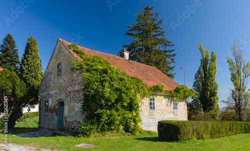 Old rural house with red tile roof overgrown with green ivy.Slovenia.