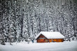Remote little wooden cabin lost in a snowfall in the Canadian Rockies