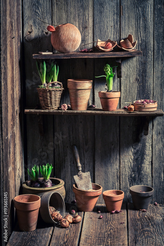 Fridge magnet Wooden shed with old clay pots and gardening tools