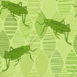 Grasshoppers on green leaves. Seamless vector pattern. Hand-drawn art nature background.