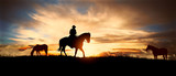 A silhouette of a cowboy and horse at sunset © ginettigino