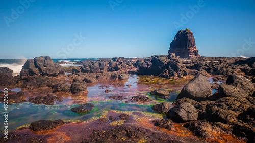 Foto op Canvas Diepbruine Cape Schank Mornington Peninsula 2