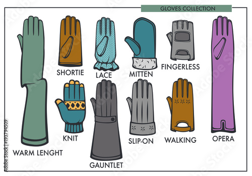 Woman gloves garment type models collection vector isolated female fashion glove line icons