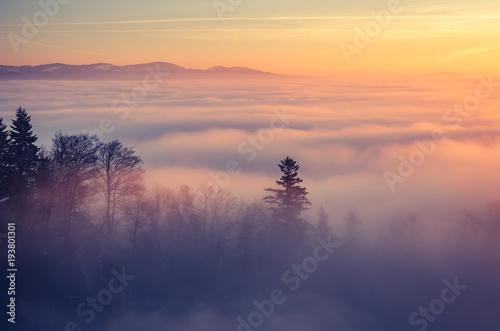 Mglisty halny lasu krajobraz w ranku, Polska