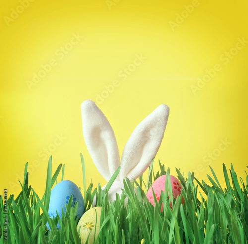 Papiers peints Herbe Easter funny bunny on green grass with easter eggs. Easter background.