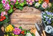 Frühling, Garten, Gartenarbeit, Gartenwerkzeug, Blumen, Hintergrund - 193820318