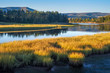 Quiet River Bends Through Golden Meadows