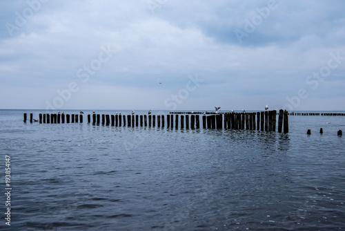 Fotobehang Pier Niebieski wieczór na morzem 2