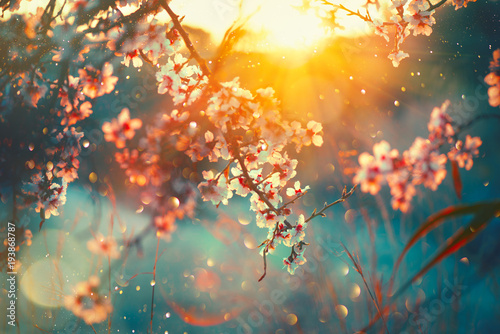 Tuinposter Natuur Spring blossom background. Nature scene with blooming tree and sun flare. Spring flowers. Beautiful orchard