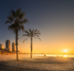Dramatic sunrset on beach of Barcelona with palm
