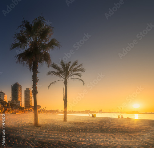 Fotobehang Barcelona Dramatic sunrset on beach of Barcelona with palm