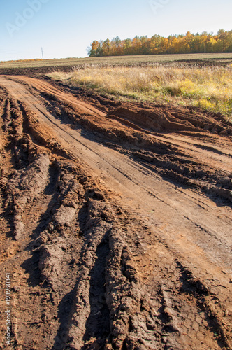 Fotobehang Herfst Autumn scenes. A picturesque dirt road in the autumn mixed forest. The hilly terrain was overgrown with withered grass. The road is rolled up by machines taking out the harvest from the field