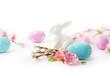 easter eggs and springg flowers on white background