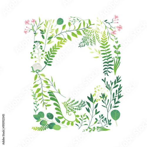 Vector cartoon abstract green plants flower herbs frame template. Meadow garden spring easter, women day romantic holiday, wedding invitation card summer floral Illustration white background - 193952545