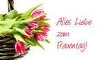 International Women's Day, Frauentag, Internationaler Frauentag, 8. März, Alles Liebe zum Frauentag, Tulpen, isoliert, freigestellt, auf weiß - 193960336